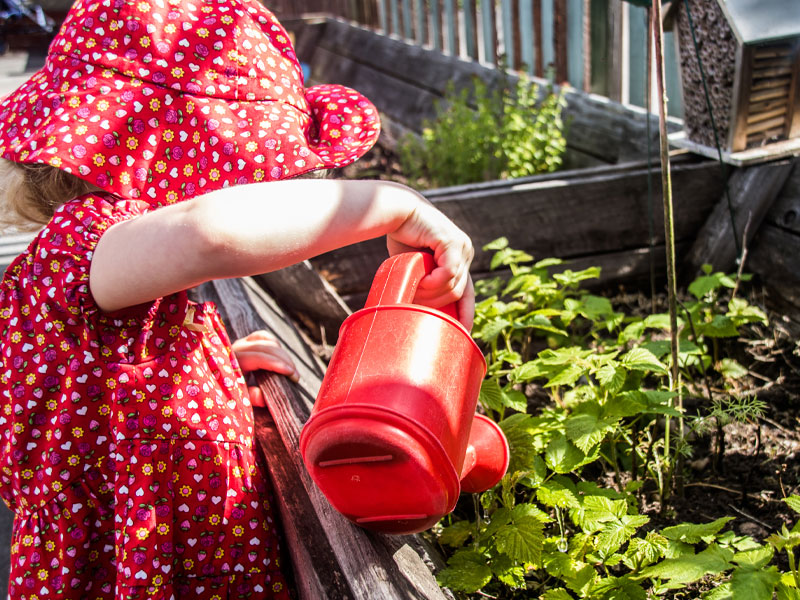 Watering the plants at Kirkburton Pre-School